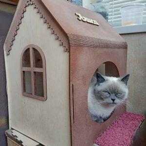 Макет домика для кошек