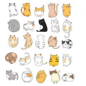 Котики в векторе