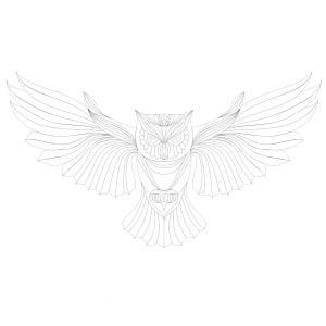 Векторной рисунок совы