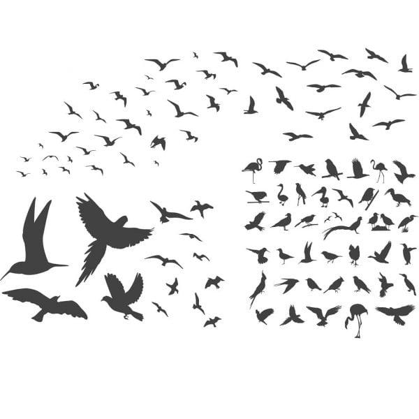 Векторные силуэты птиц