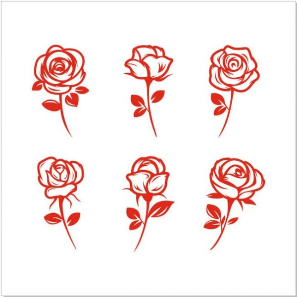 Векторный рисунок розы