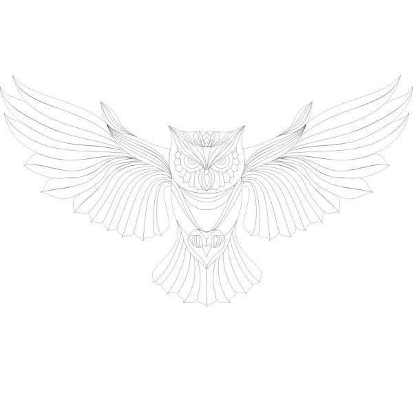 Сова векторный рисунок