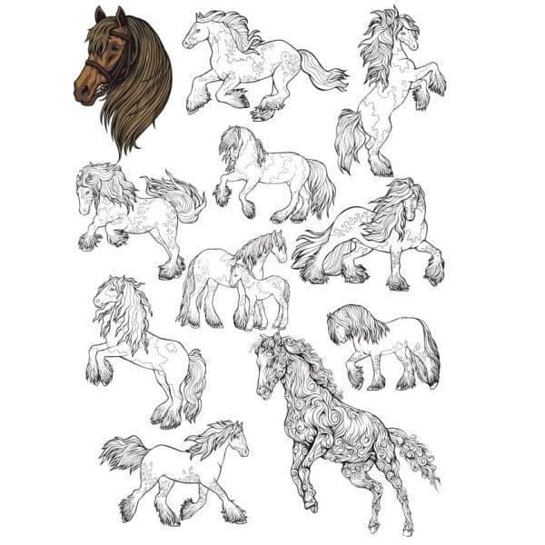 Набор векторных рисунков коней
