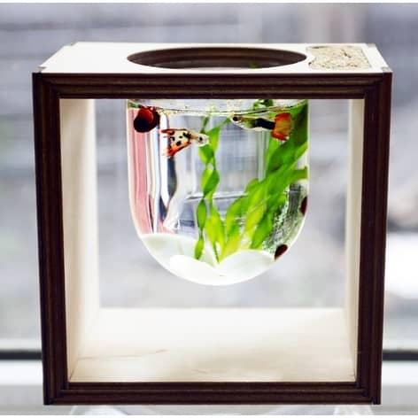 Макет аквариума в колбе