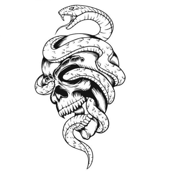 Череп со змеёй