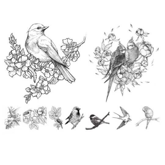 Птицы в векторе