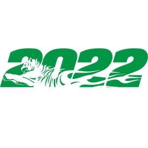 тигр 2022