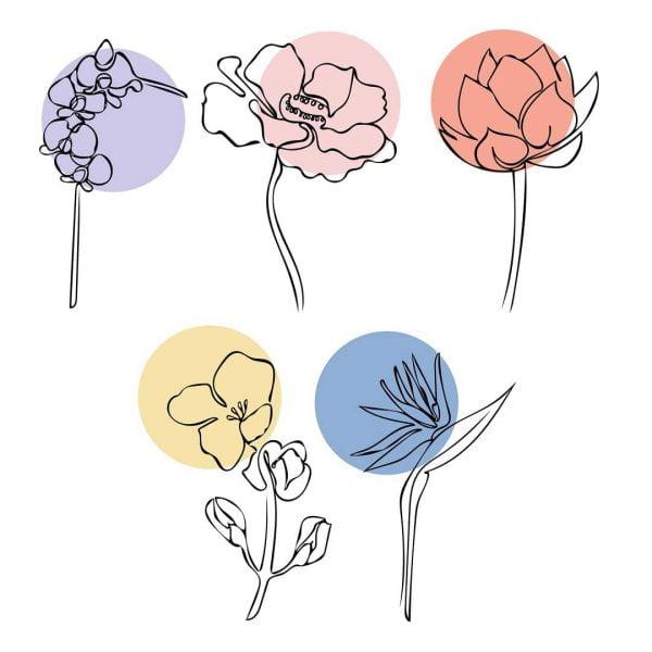Векторные рисунки цветов