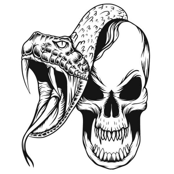 Рисунок змея и череп