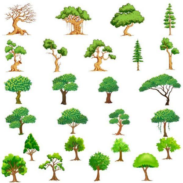 Рисунки деревьев в векторе