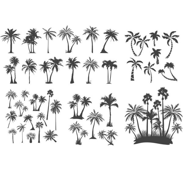векторные рисунки пальм