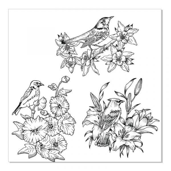Птицы на ветвях