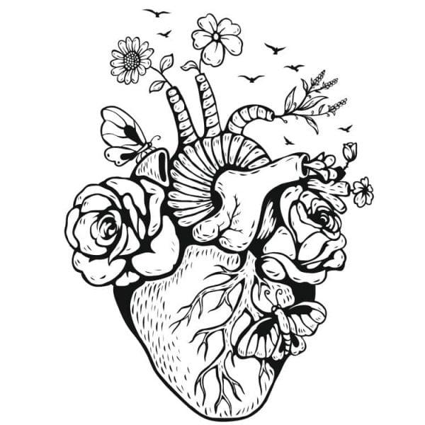 Живое сердце рисунок